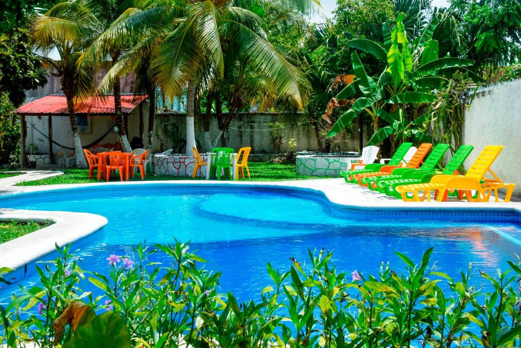 The swimming pool at or near Amigos Hostel Cozumel