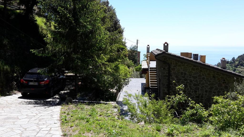 Giardino di Arvasia