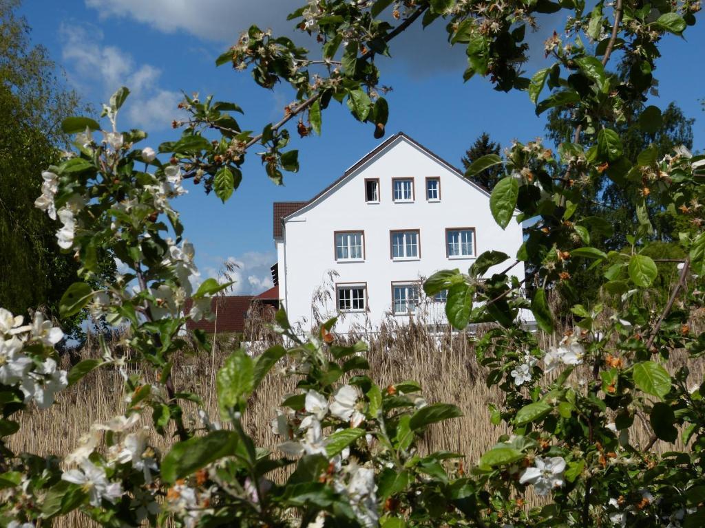 A garden outside Das Haus am Teich