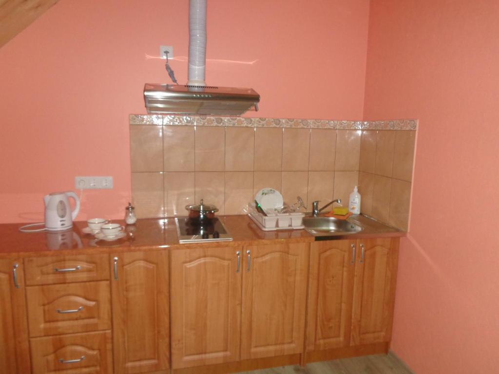 A kitchen or kitchenette at Brīvdienu māja Audas