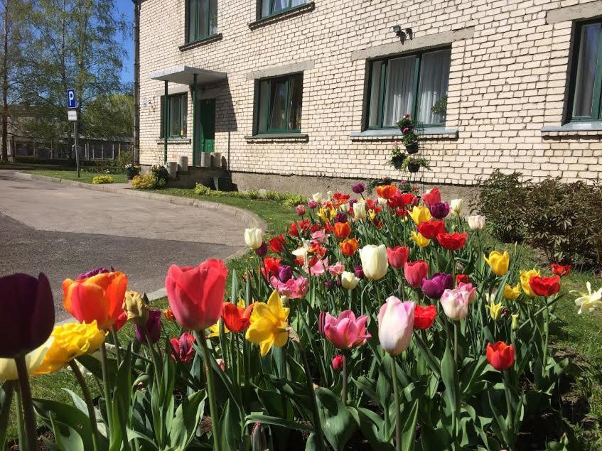 A porch or other outdoor area at Strādnieku viesnīca