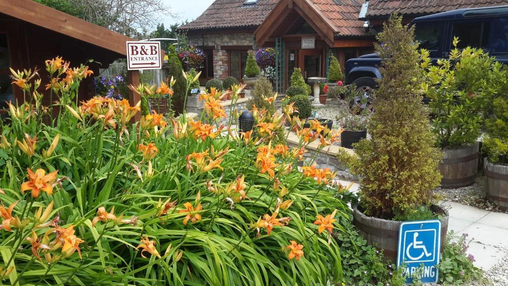 A garden outside Bridge Farm Guesthouse