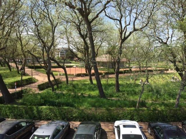 A garden outside B&B Duinroosje