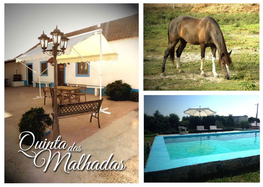 The swimming pool at or near Quinta das Malhadas