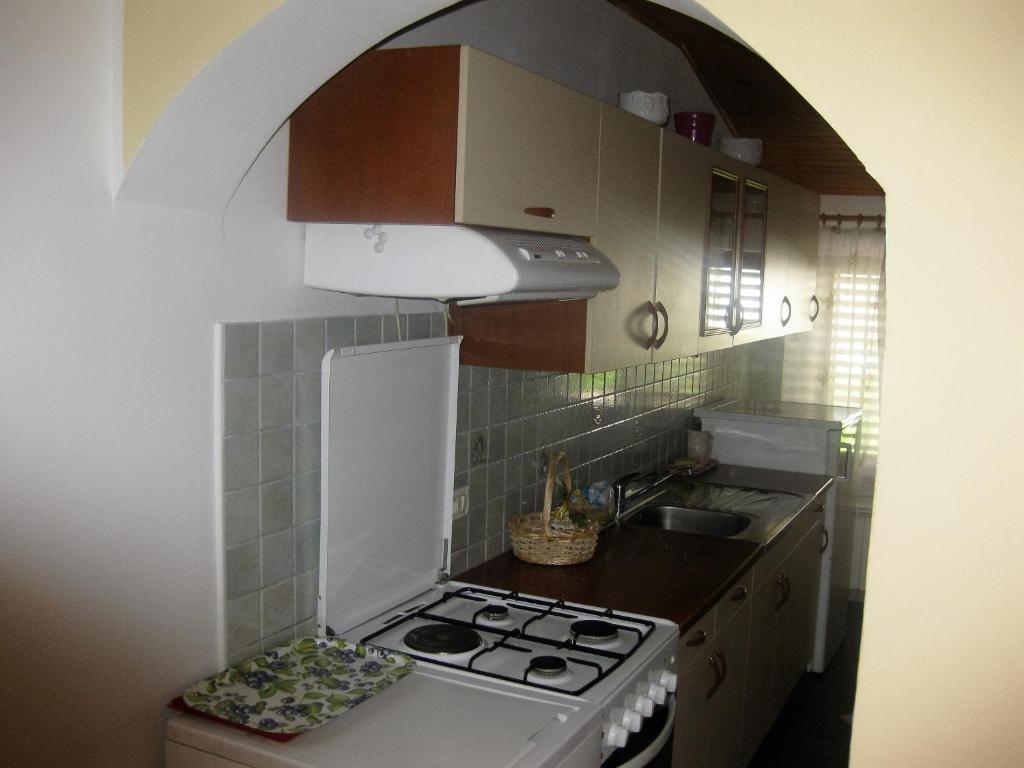 Kuhinja oz. manjša kuhinja v nastanitvi Apartment Svobode Izola
