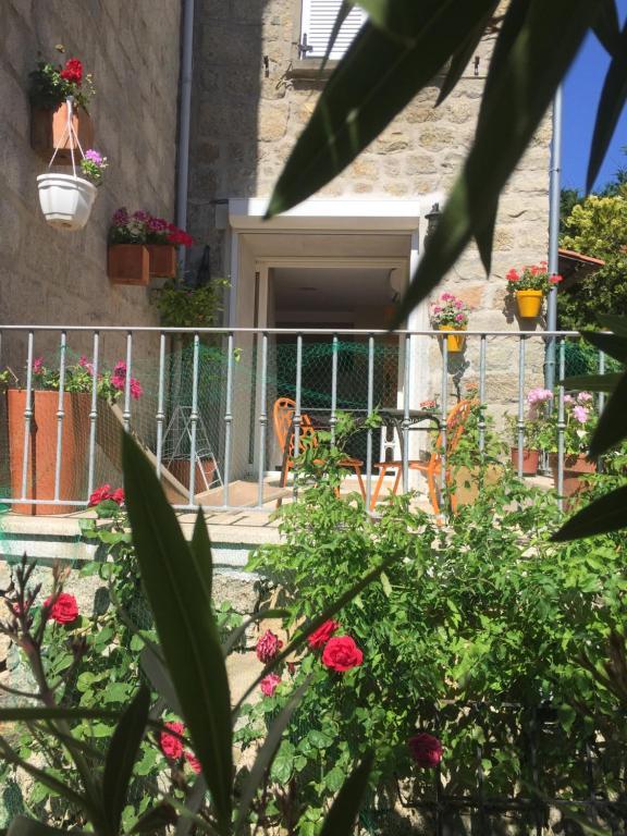 A porch or other outdoor area at Maison de Vacances - Casa Mezanaccia avec Terrasse fleurie