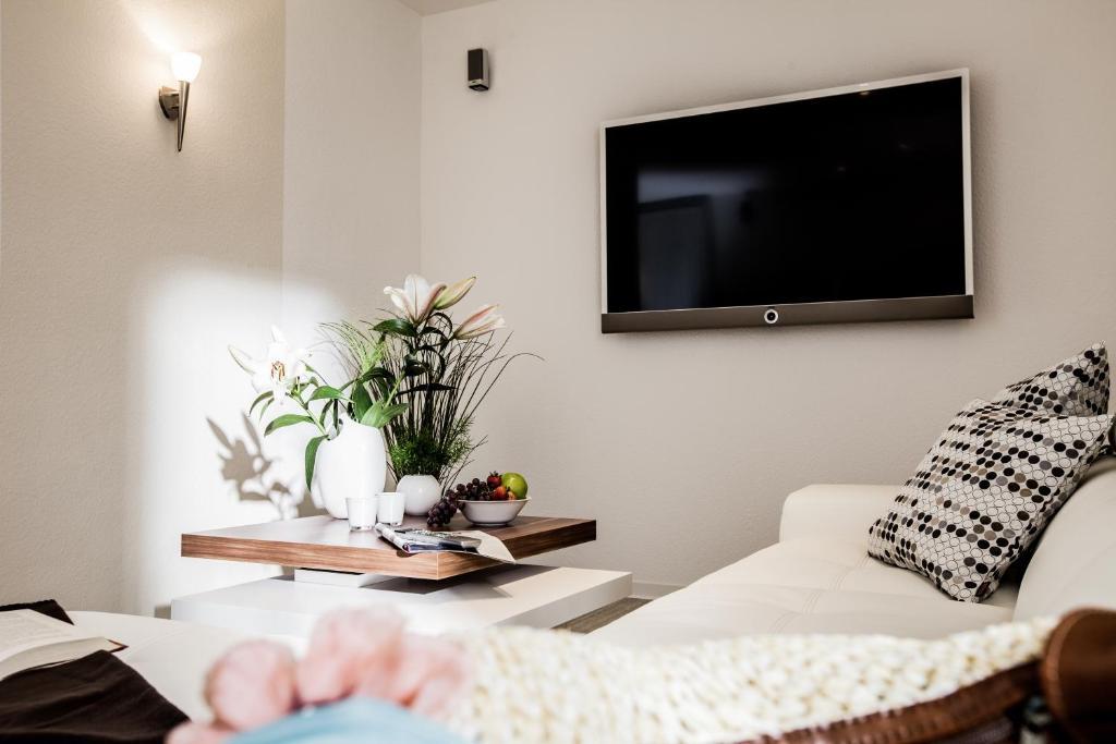 TV/Unterhaltungsangebot in der Unterkunft Ferienwohnung Schmetterling