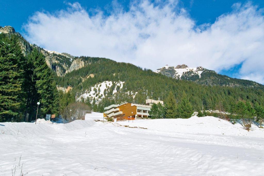 Hotel Ski Club Regina E Fassa durante l'inverno
