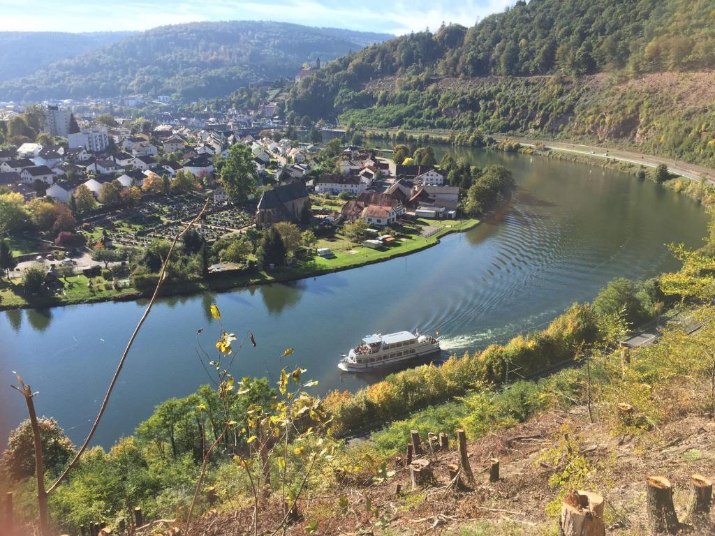 Schlampe aus Hirschhorn (Neckar)