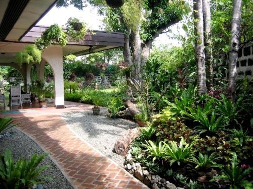 A garden outside Casa Joaquin BnB
