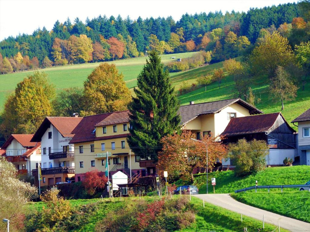 Hotel Gasthof Zur Krone Odenwald-Sterne-Hotel Beerfelden, Germany