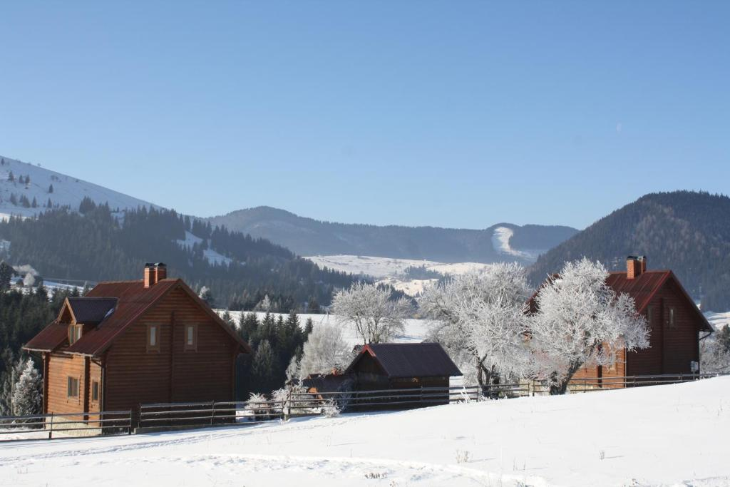 Polonyna during the winter