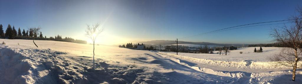 K Zastavce 557 during the winter