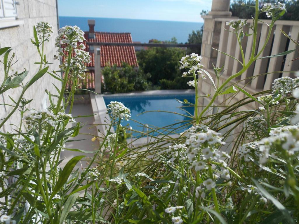 The swimming pool at or near Guesthouse Villa Klaic