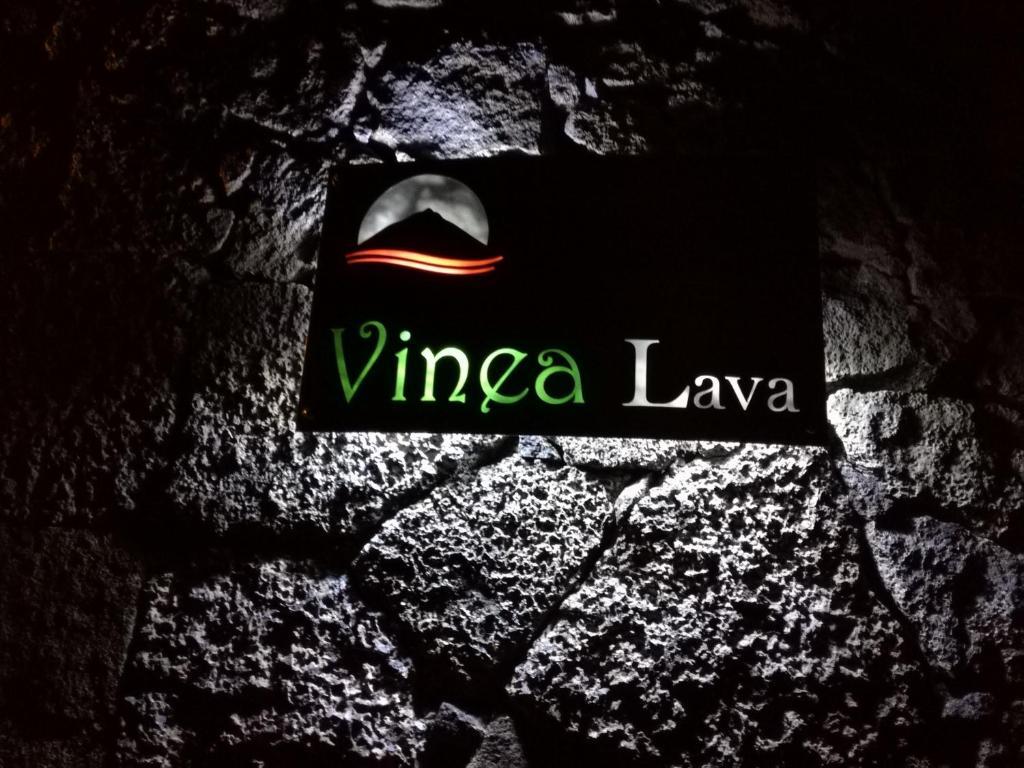 Vinea Lava Praia Campo Pico
