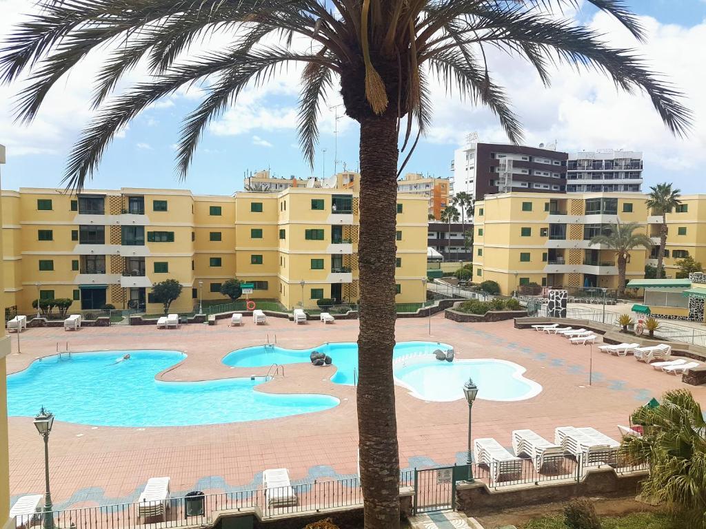 Vista sulla piscina di Huella Canaria o su una piscina nei dintorni
