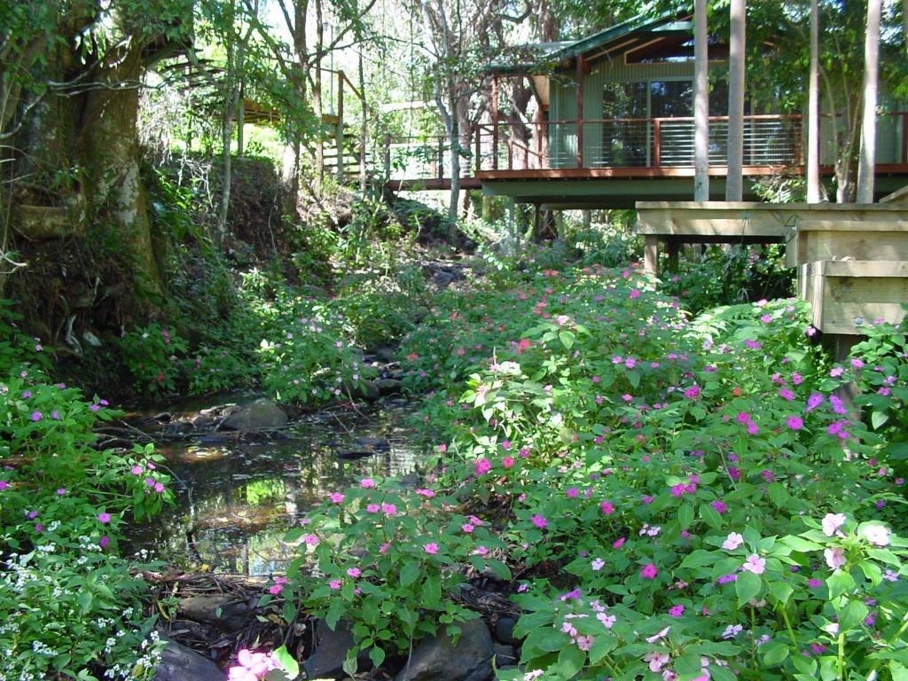 A garden outside Treetops Montville