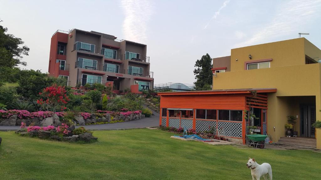 Guest Houses In Chiksa-dong