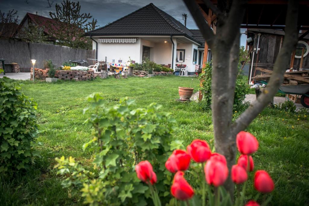 Vonkajšia záhrada v ubytovaní Big Garden House
