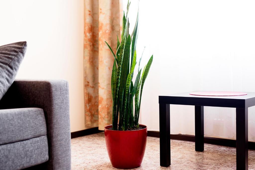 A seating area at Apartment KakDoma