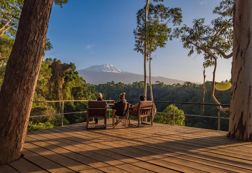 12 Best Hotels and Best Places To Stay in Kilimanjaro 2021