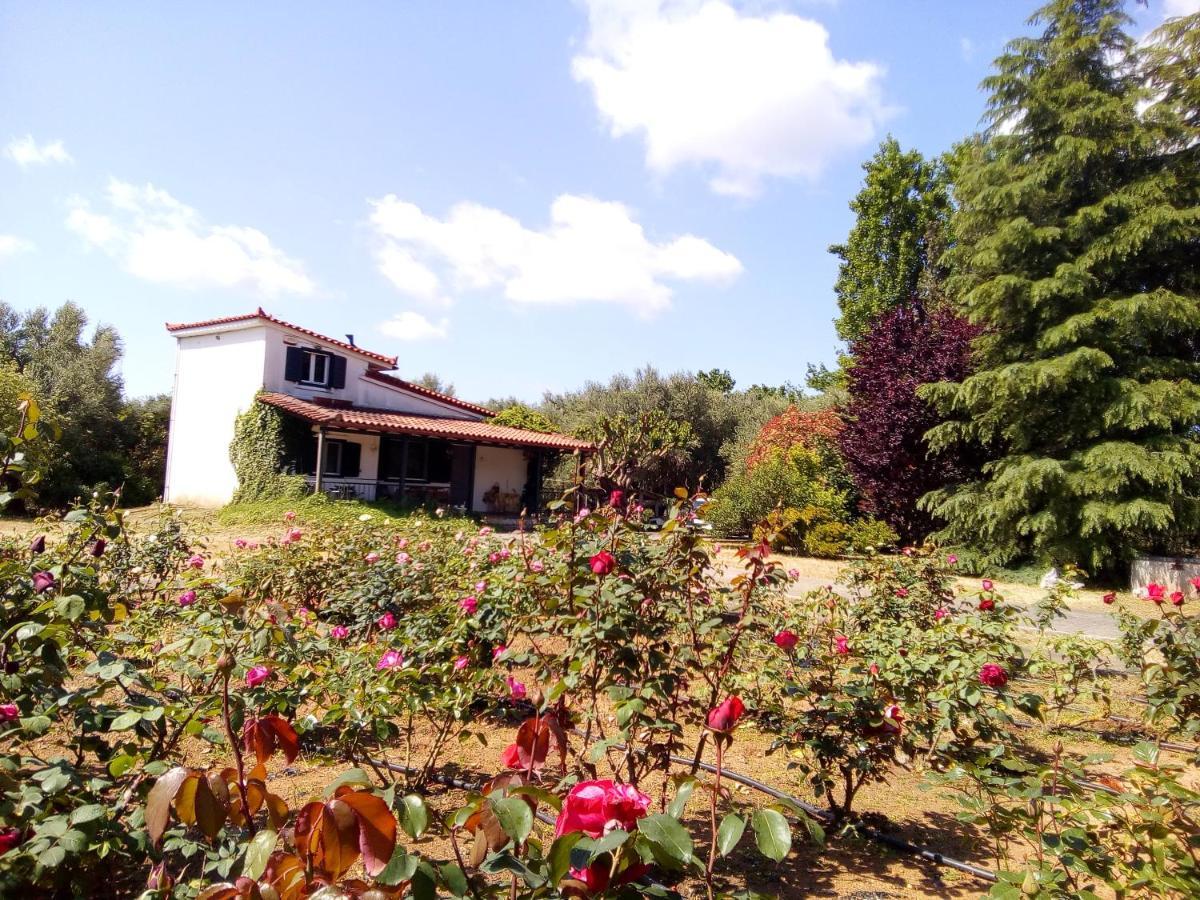 Загородный дом  Beautiful Cottage With A Rose Garden