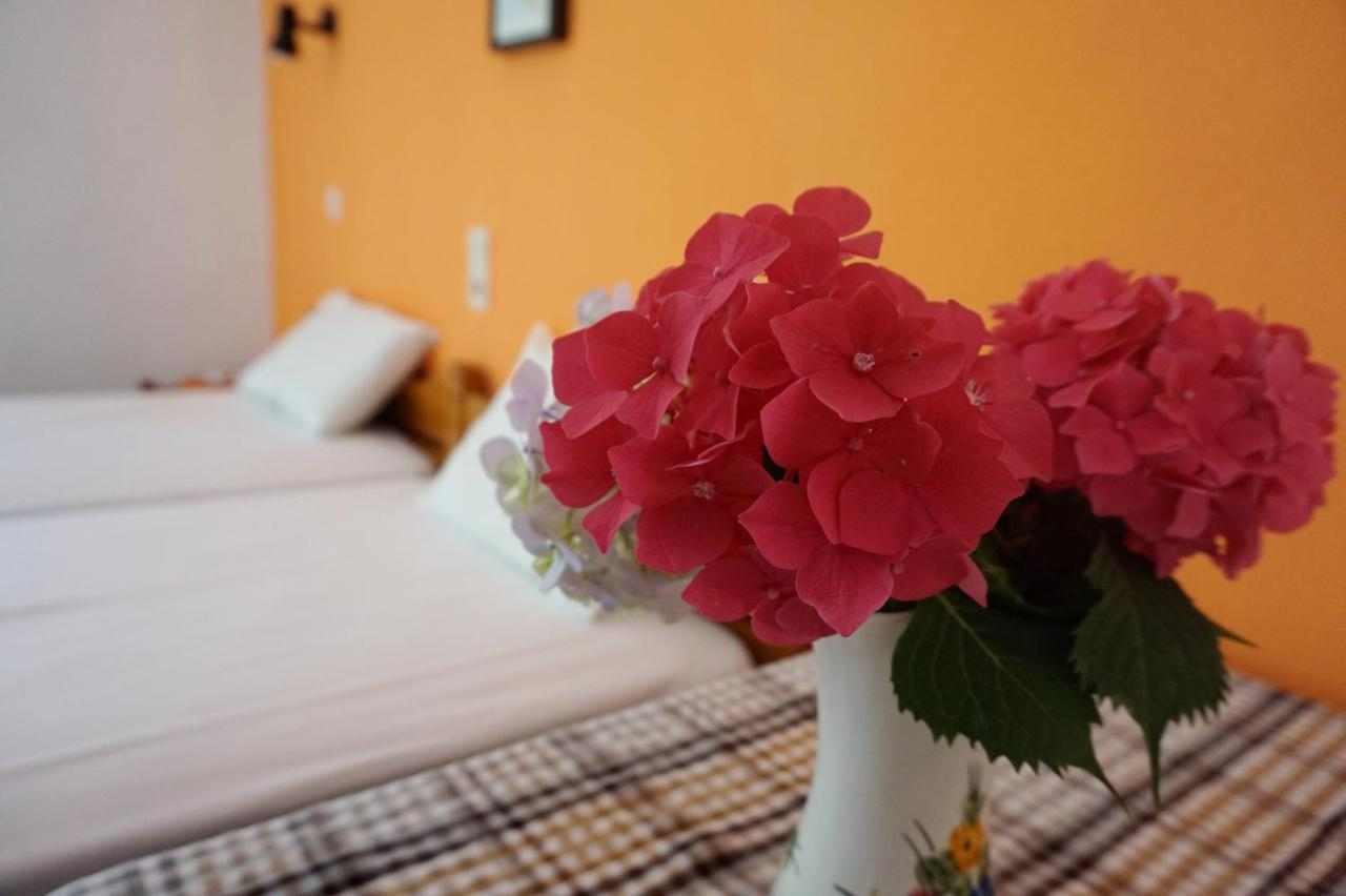 Гостевой дом  Galini  - отзывы Booking