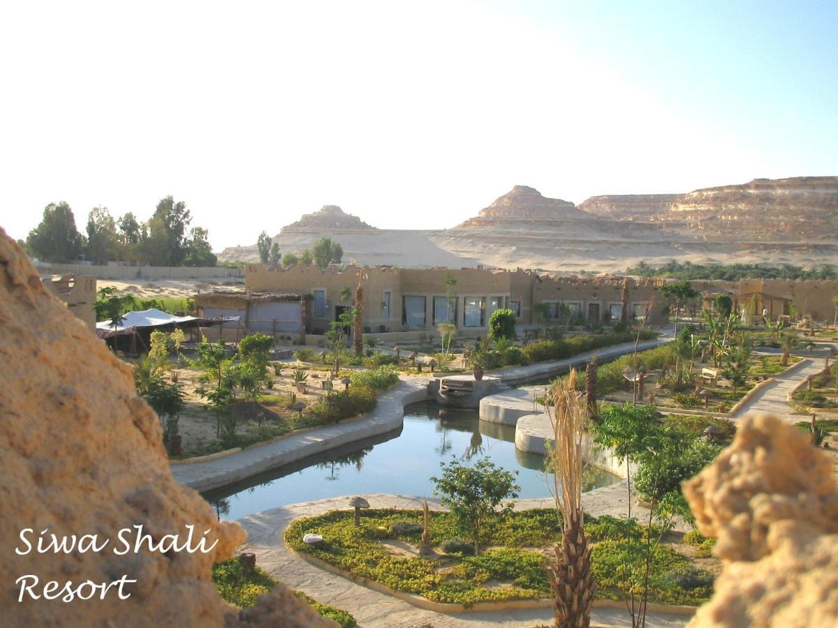 Курортный отель  Siwa Shali Resort  - отзывы Booking