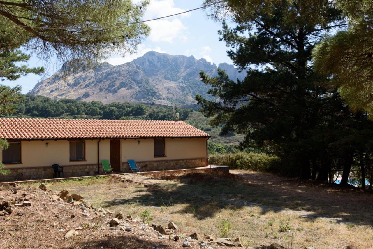 Фермерский дом  Agriturismo Bosco Pianetti