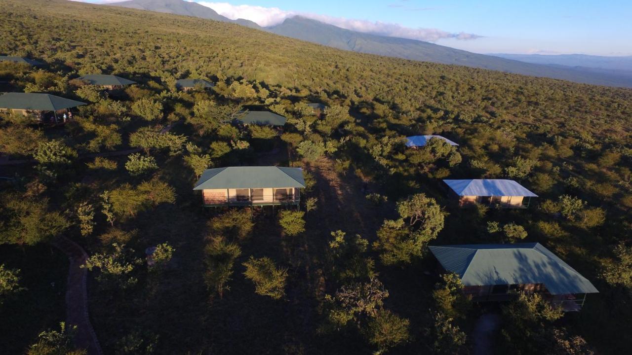 Люкс-шатер  Ngorongoro Wild Camp