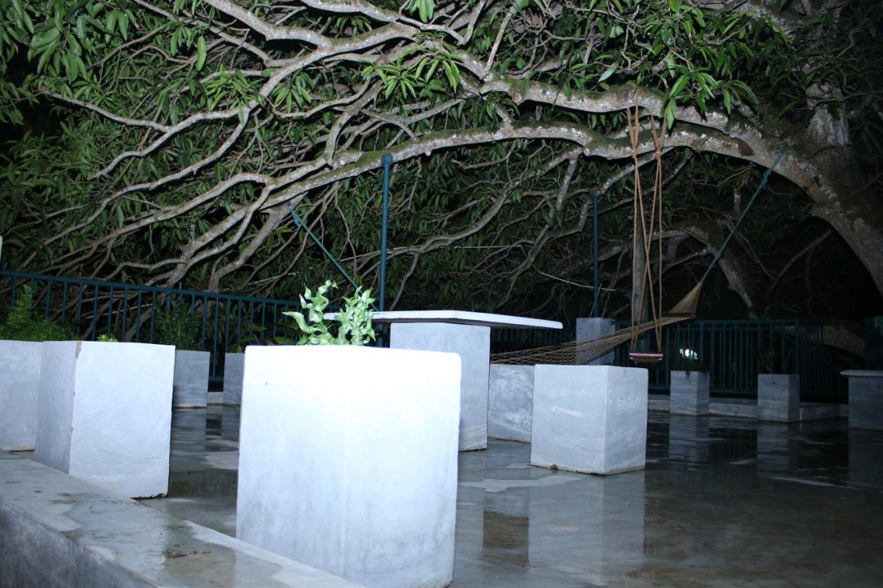 Гостевой дом  Villa Mango Tree  - отзывы Booking