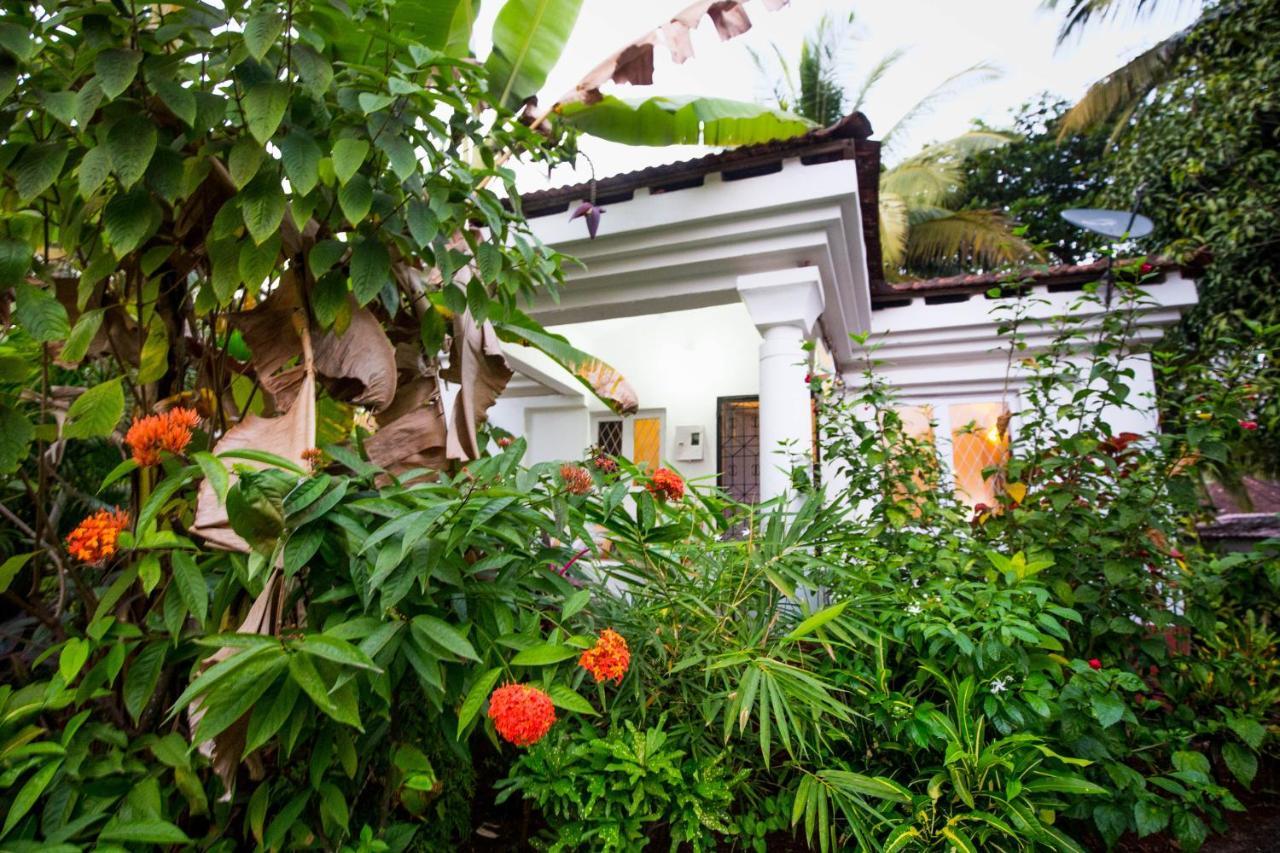 Вилла  Villa Mogra  - отзывы Booking