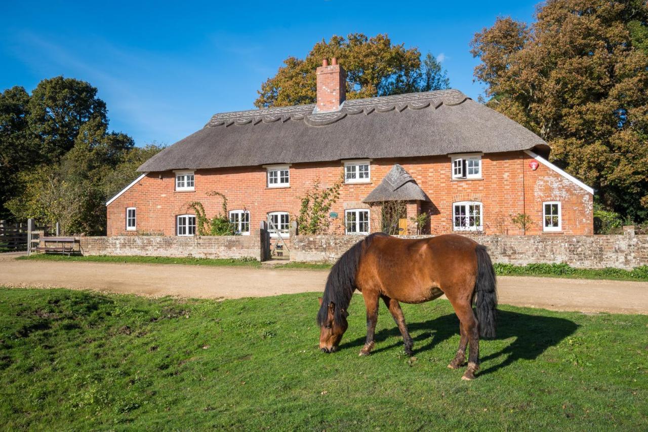 Thatched Cottage, Brockenhurst – 32. aasta uuendatud hinnad