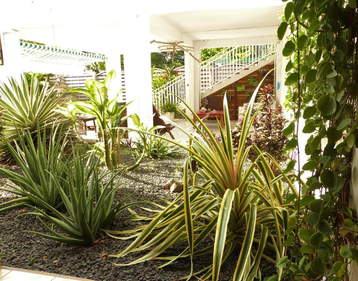 Gites Rose des Vents Guadeloupe Deshaies Booking