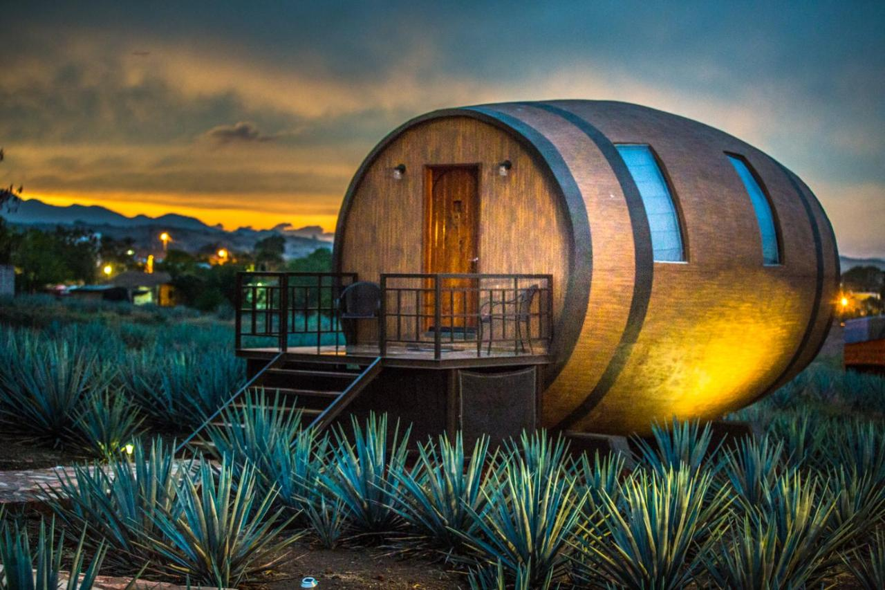 Uno de los hoteles exóticos mexicanos se encuentra en Tequila, Jalisco.