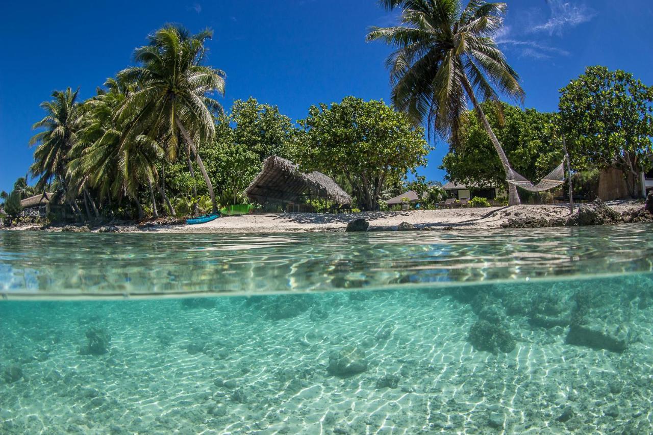 Фото Отель типа «постель и завтрак» Le Coconut Lodge