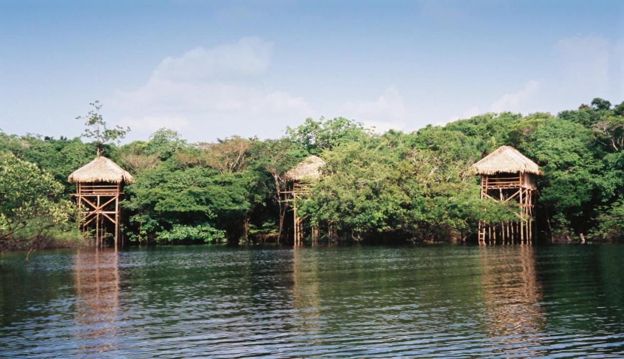 136750355 - Hotel Ditengah Hutan Terkeren Dunia Yang Bikin Happy