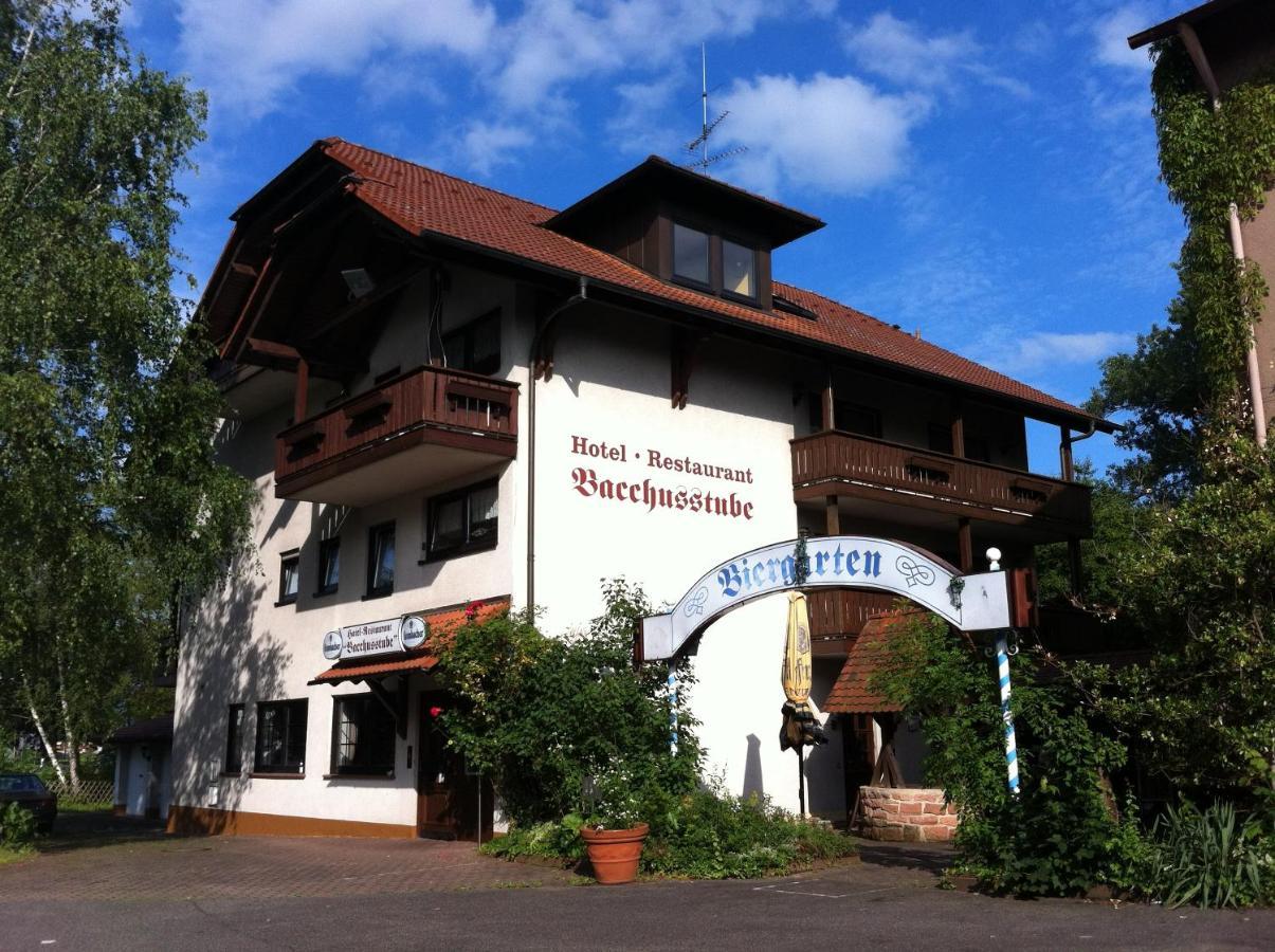 Мини-гостиница  Hotel Bacchusstube Garni