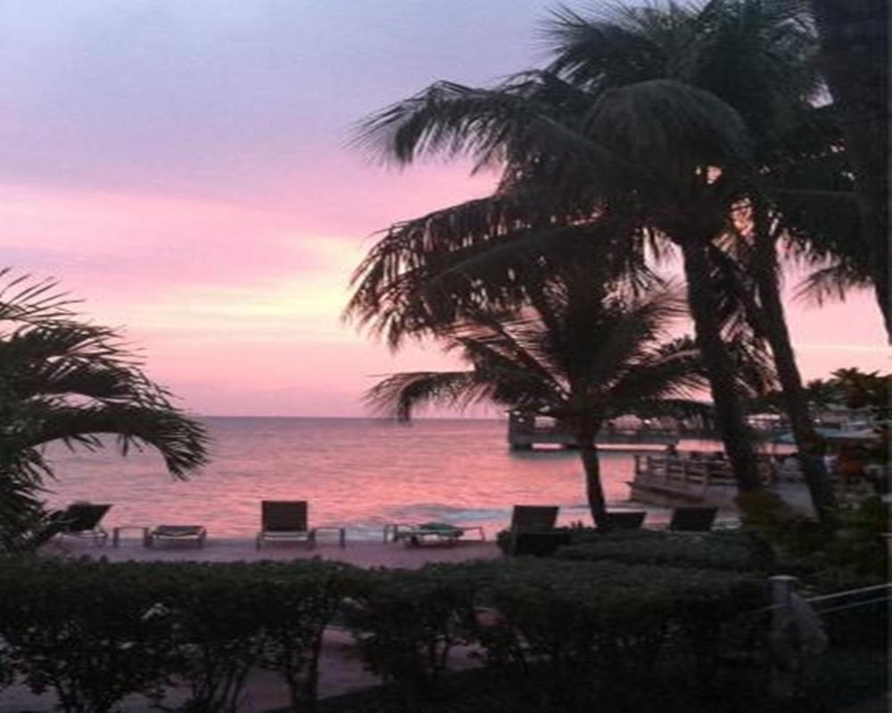 Апартаменты/квартиры  Coconut Beach Resort