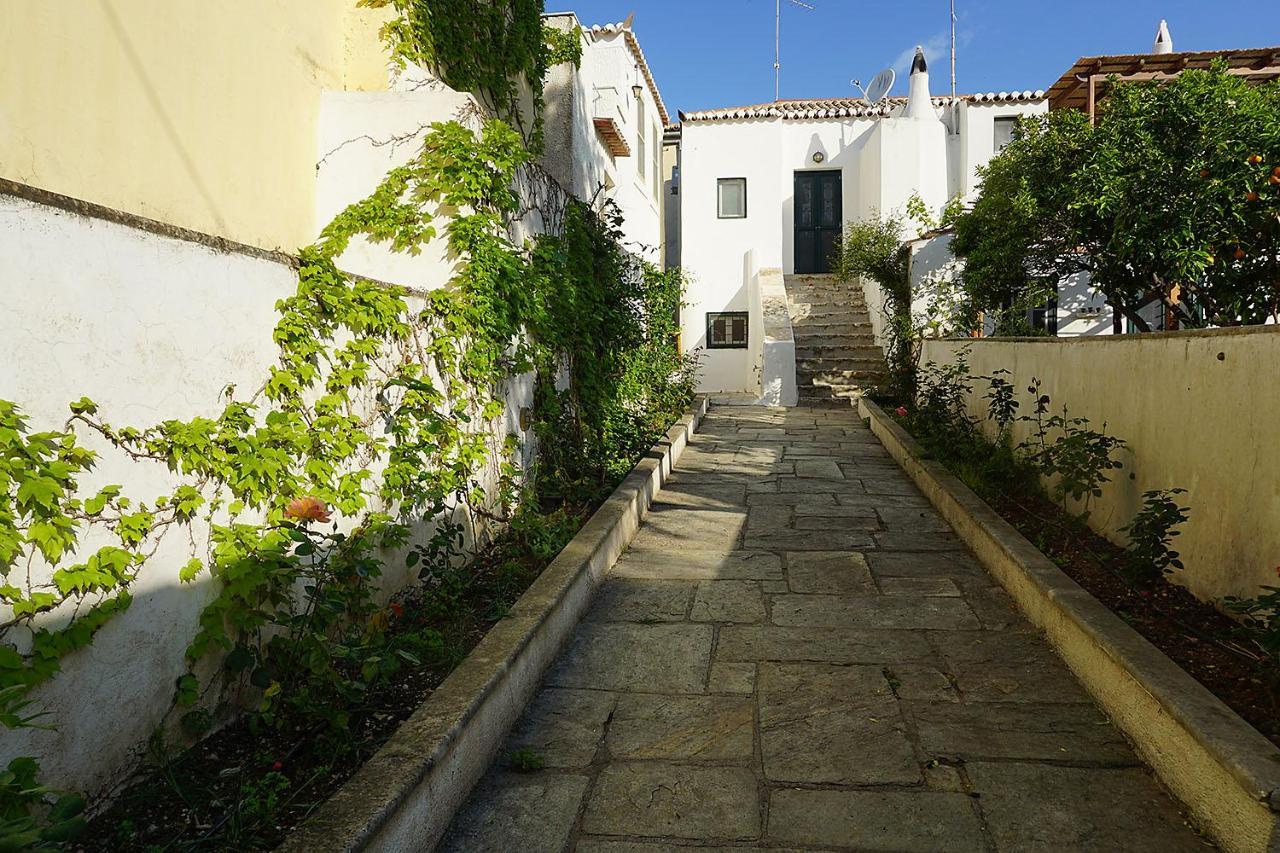 Загородный дом  Two Olive Trees