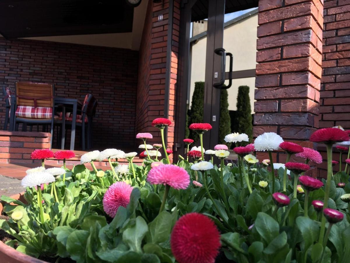 Проживание в семье  Apartamenty AP 21  - отзывы Booking