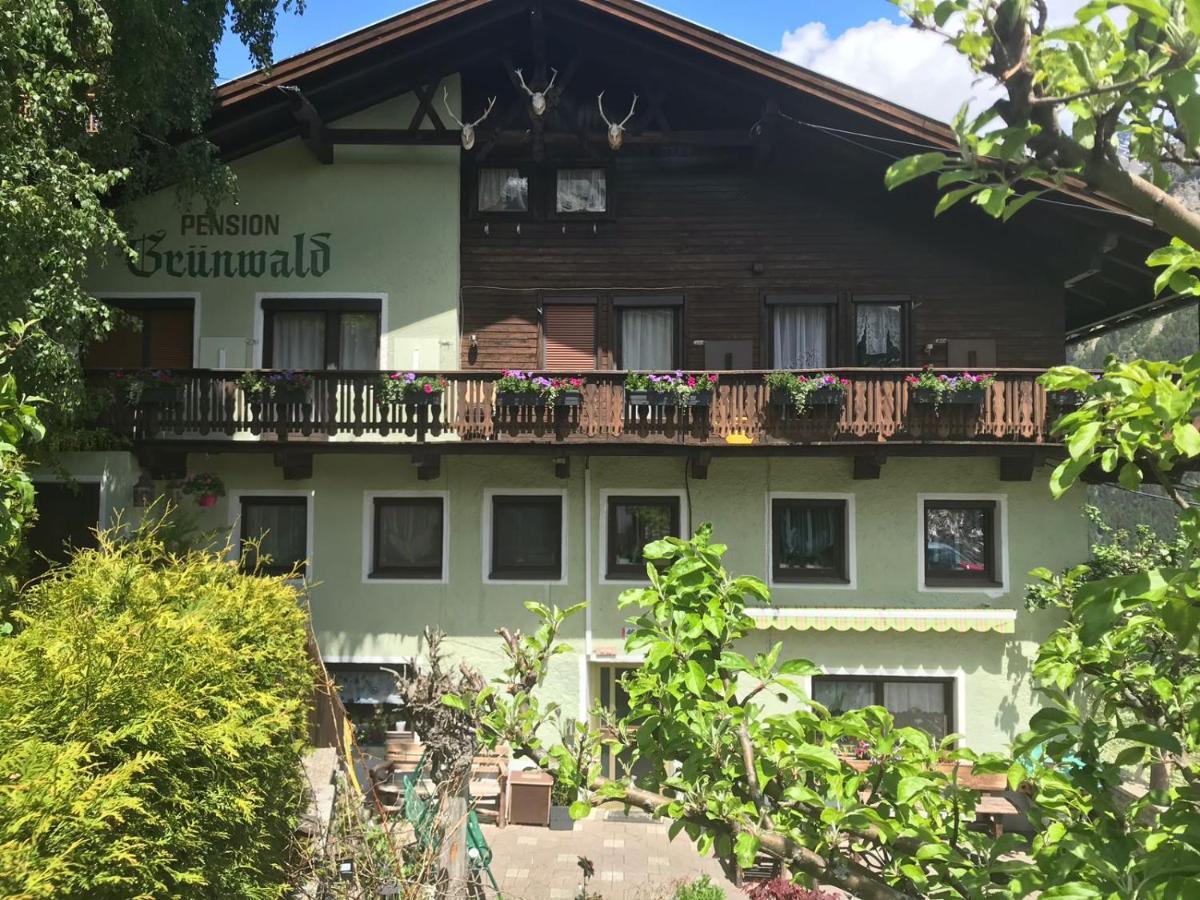 Гостевой дом  Pension Grünwald  - отзывы Booking