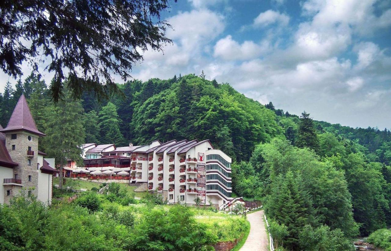 Отель  Hotel Dobru