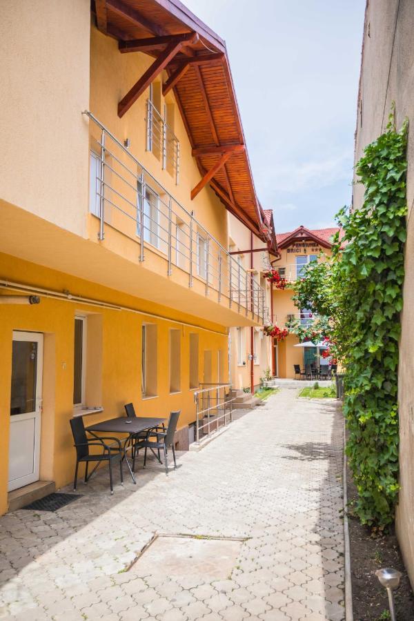 Гостевой дом  Гостевой дом  Pensiunea Brici