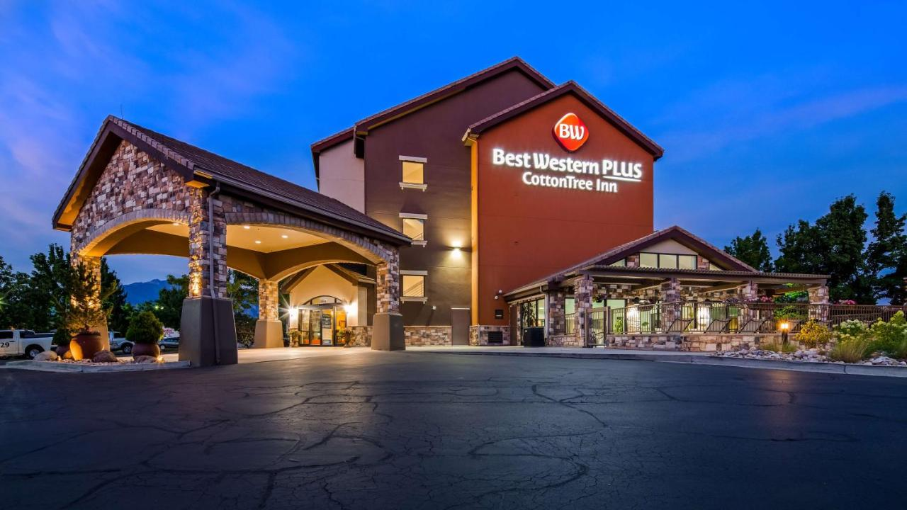 Отель  Best Western Plus Cotton Tree Inn  - отзывы Booking
