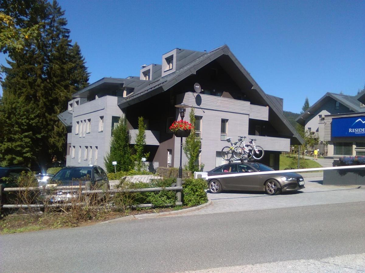 Апартаменты/квартиры  Apartmán Harrachov Ski  - отзывы Booking