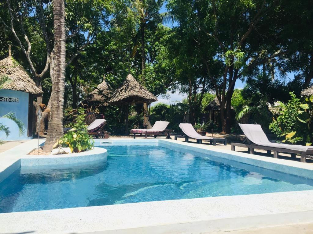 Фото  Гостевой дом  Villa Bahati Oasis Sun Dream