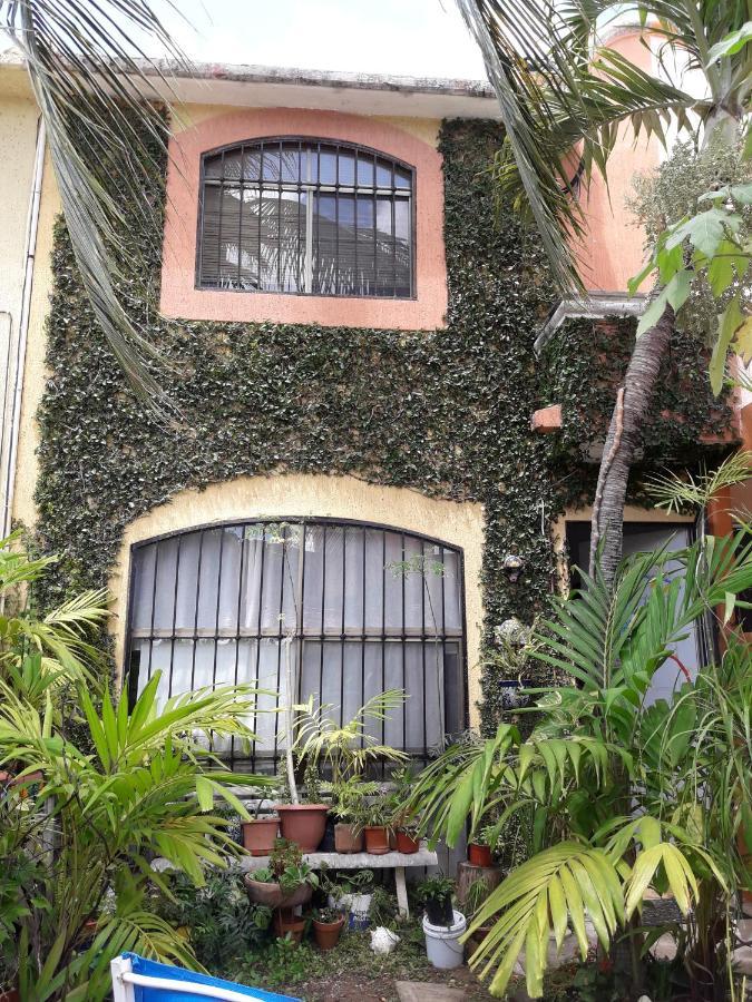 Проживание в семье  Проживание в семье  Casa Luz Verde