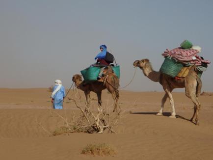 Кемпинг  Lahcen Sahara  - отзывы Booking