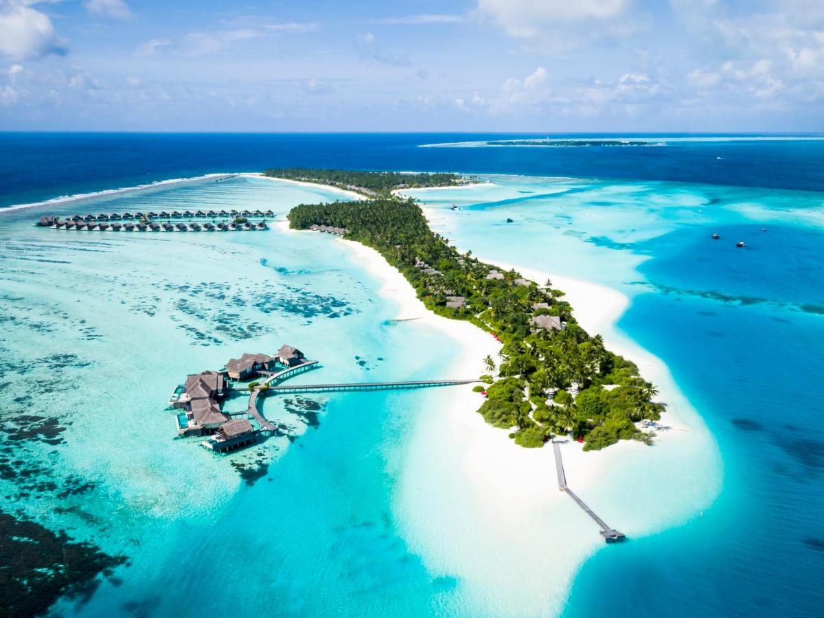 Курортный отель  Niyama Private Islands Maldives